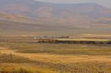 UP 7125 Toponas CO 03 Oct 2008