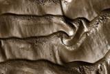 Brown Mud