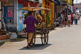 Banana Vendor, Kochi