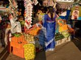 Blue Sari, Kochi