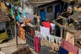 Clothes Lines, Kochi
