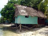 Black Coral Island