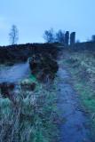 Two Stoops In Morning Mist  09_DSC_0408