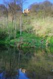 Spring Dawn In Hackfall Woods  09_DSC_0900