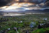 Rannoch Moor morning  10_DSC_5676