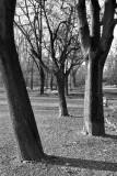 Giardini Indro Montanelli