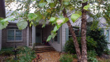 P1000132 House Through Birch