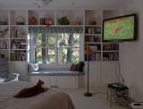 P1010308 Beegie Watches Video Catnip