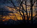 P1201972 Sunset this evening