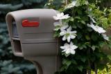 _MG_2185 Mailbox