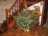 Noel 2008