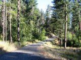 cabin-gravel-road.jpg