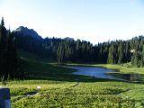 meadow-off-410.jpg