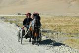 Tibetan man driving a horse cart