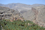 Misfat Al Abryeen & Al Hamra