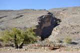 Canyon eroded in the southwest flank of Jabal Shams