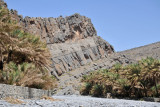 Driving up Wadi An Nakhur into the Grand Canyon of Arabia