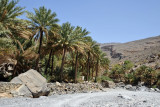 Oasis village of Al Hajir, 2 km into the gorge