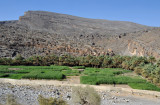 Oasis of Ghul with the abandoned old village and the south rim of the Wadi An Nakhur Gorge