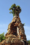 A tree has totally embedded itself inside this stupa