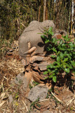 Ruins of an elephant, Nyaung Ohak