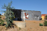 Tin shack painted with Zebra and Fish Eagle near Windhoek