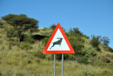 Wildlife Crossing, Trans-Kalahari Highway