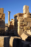 LibyaDec10 1331.jpg