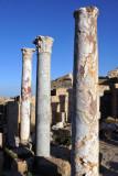 LibyaDec10 1338.jpg