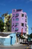 Purple house, Male'
