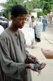Boy selling scarab bracelets