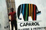 Painted elephant logo of Caparol, Dar es Salaam