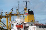 29 October 2007 , the Dai Hong Dan was attacked by pirates off Somalia.