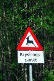 Kryssingspunkt sign