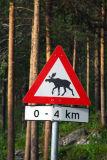 Moose crossing, Norway