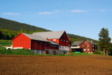 Red farm buildings, Oppland