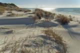 Lower Dunes.jpg