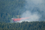 Tanker 17 dropping on the Saddle Fire Monday Morn 10 AM