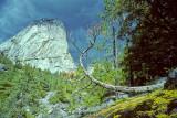 Storm Brewing - Yosemite