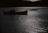 Skiffs in Moonlight Tamales Bay