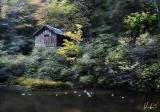 high boathouse 11x8
