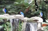 birds judy.jpg
