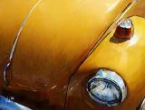 yellow bug 13x10