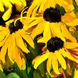 flowers 9x9