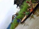 Inle Lake 021.jpg