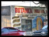 Botanica Nueva.
