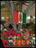 La Virgen image on a  the Mexican flag