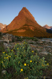 Cinquefoil and Grinnell Point