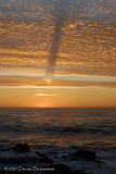 Wild cloud effect