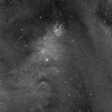 Les nébuleuses du Cône et de l'Arbre de Noël, NGC 2264